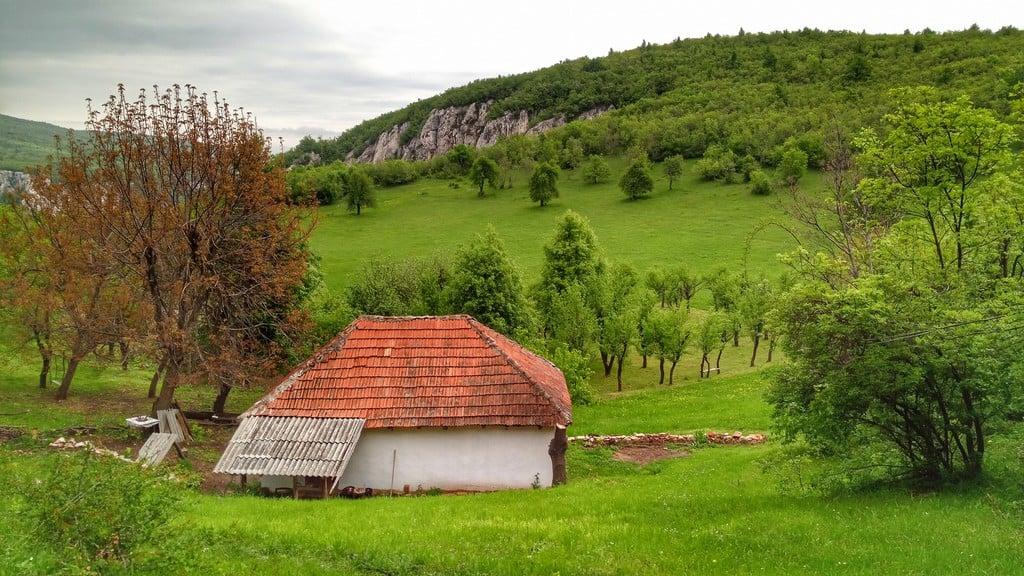 Lazarev-kanjon